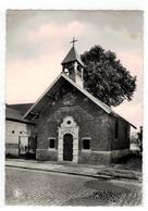 JODOIGNE  Chapelle à L'arbre - Jodoigne