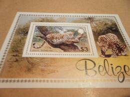 Miniature Sheet Belize Perf Jaguar 1983 - Belize (1973-...)