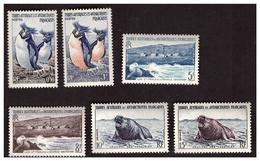 Série Timbre N° 2 à 7 Neufs *** T A A F - Unused Stamps