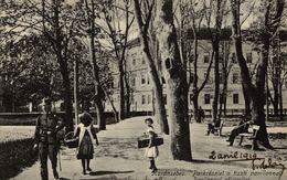 ROMANIA - CARANSEBES, Pavilonoul Oficierilor - Romania