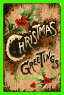 NOEL - CHRISTMAS GREETINGS - RAPHAEL TUCK & SONS - TRAVEL IN 1910 - - Noël