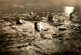 HARDY BOY SCOUTS LEARN TO SWIM  OF NORWOOD SCOUTING JAMBOREE  SCOUTISME 16*12CM Fonds Victor FORBIN 1864-1947 - Photographs