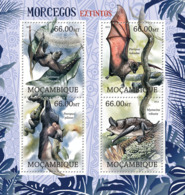Mozambique 2012 Fauna Bats - Mozambique