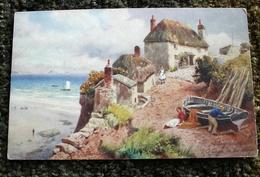 Cottage On The Cliffs Paignton TUCK's Oilette #6284 - Paintings