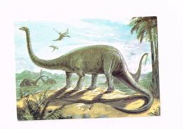 Dipiodocus (Dinosaure) - Animales