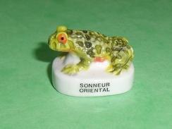 Fèves / Animaux : Grenouille , Sonneur Oriental  T96 - Animali