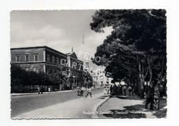Molfetta Seminario Vescovile  Villa Comunale Animata Viaggiata 1957 - Molfetta