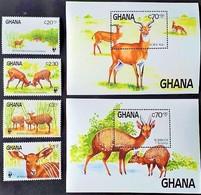 # Ghana 1984**Mi.1060-65 Saving Around The World: Bongo , MNH [23;70] - Stamps