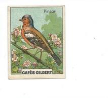 Pinson Oiseaux Chromo Cafés Gilbert 56 X45 Mm Bien 2 Scans (Enchères Anonymes) - Thee & Koffie