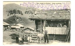Chalets De BRETAYE Alpes Vaudoises Chèvres Animée Restaurant De Bretayes Alpe D'OLLON (cachet Violet) CHESIÈRES 1905 - BE Berne