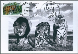 B4423 Russia USSR CM Fauna Animal Tiger (100 Rubel) ERROR - Abarten & Kuriositäten