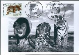 B4424 Russia USSR CM Fauna Animal Tiger (500 Rubel) ERROR - Abarten & Kuriositäten