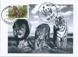 B4425 Russia USSR CM Fauna Animal Tiger (250 Rubel) ERROR - Abarten & Kuriositäten