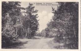 Lichtaart De Diestweg Circulée En 1964 - Kasterlee