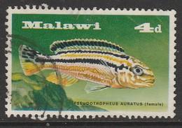 Malawi  1967 Fish - Lake Malawi Cichlids 4 P Multicoloured SW 68 O Used - Malawi (1964-...)