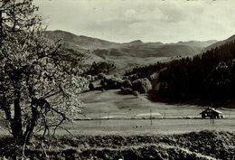 Alpe Du Grand Serre, La Morte.   Francia  France Frankreich - Unclassified