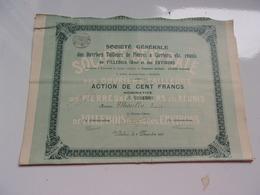 Ouvriers Tailleurs De Pierres & Carriers De VILLEBOIS (1905) Ain - Actions & Titres