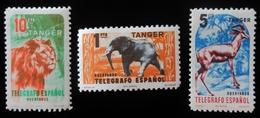 TANGER TELEGRAFOS LION ELEPHANT ANTILOPE  Neuf Trace Charnière - Spanish Morocco