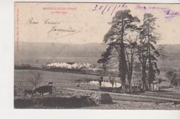 26987 MANNEVILLE LA PIPARD Les Paturages - -ed Ozange, Photyo Lib Pont L'eveque -train Vapeur Vache 1906 - France