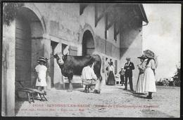 CPA 01 - Divonne-les-Bains, Ferme De L'Etablissement Thermal - Traite D'une Vache - RARE - Divonne Les Bains