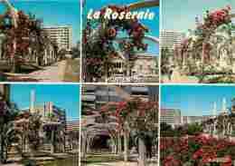 69 - Caluire - Montessuy - La Roseraie - Multivues - Fleurs - Voir Scans Recto-Verso - Caluire Et Cuire
