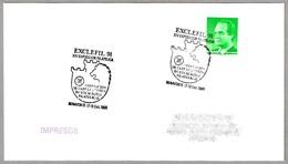 Matasellos EXCLEFIL 91 - Exposicion Filatelica Federacion Castilla Y Leon. Benavente, Zamora, 1991 - 1931-Hoy: 2ª República - ... Juan Carlos I