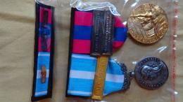 Duo De Médailles Défense Nationale Bronze Et La Médaille De L'outre-mer Avec Barrettes.. - France