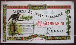 CARTA ASSORBENTE AGENZIA AGRICOLA ENOLOGICA G. B. GIAMMARINI FERMO - Carte Assorbenti