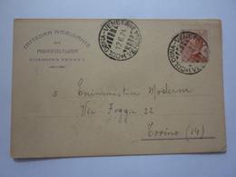 """Cartolina Postale Viaggiata """"CATTEDRA AMBULANTE DI AGRICOLTURA - COLOGNA VENETA"""" 1924 - Storia Postale"""