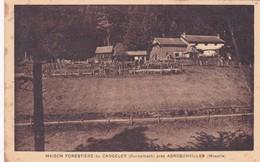57-Abreschviller Maison Forestière Du Canceley - France