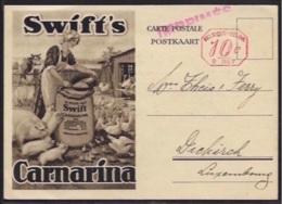 ANTWERPEN - Swift - Company - 24 Jordaens Quai - CARNARINA - Antwerpen