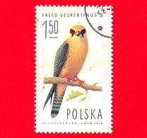 POLONIA - Usato - 1975 - Uccelli Rapaci - FALCO (Falco Vespertinus), Female - 1.50 Zl - 1944-.... Repubblica