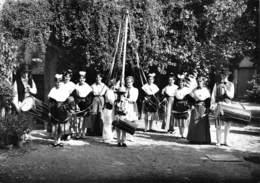 PELISSANNE - Groupe Folklorique Lou Pelican - Tambourinaires - Photo Monnier, Salon-de-Provence - Pelissanne