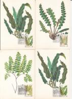 79304- FERNS, PLANTS, MAXIMUM CARD, OBLIT FDC, 6X, 1987, RUSSIA-USSR - Plants
