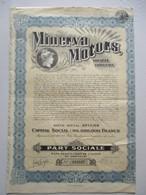Action Belge : Minerva Motors - Capital 116 800 000 - Titre De 1931 - Automobile
