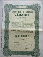 Action Belge : Société Belge De Céramique - CERABEL - Baudour Mons - Industrie