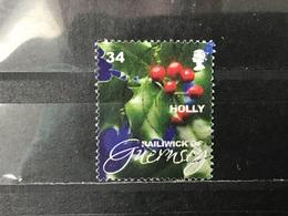 Guernsey - Kerstflora (34) 2008 - Guernsey