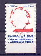 CINDERELLA ERINNOFILIA SAGRA DEL CIELO GARA INTERNAZIONALE DI ACROBAZIA AEREA  (GIUGN190027) - Erinnofilia