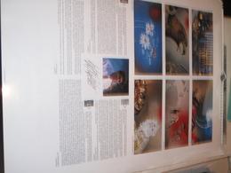 PHILPPE WAXWEILER  - CALENDRIER GRAND FORMAT 1993 AVEC 6 ILLUSTRATIONS - Formato Piccolo : 1991-00