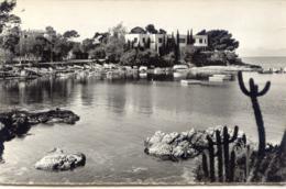 CPSM - CAP D'ANTIBES - PORT DE L'OLIVETTE - Antibes