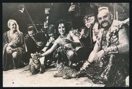 FOTO  14 X 9.5 CM  CIRKUS BOLTINI  1973 - Cirque