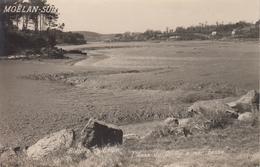 CP Photo Moëlan-sur-Mer - Rivière Du Bélon - L'anse Du Guilly à Mer Basse - Moëlan-sur-Mer