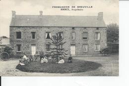 BREUVILLE   Fromagerie HAMEL - France