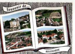 42 Souvenir De BELLEGARDE, Style Album Photos Ouvert - France