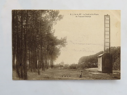 C. P. A. : 17 ILE DE RE : La Forêt Et Le Phare De Trousse Chemise, Timbre En 1910 - Ile De Ré