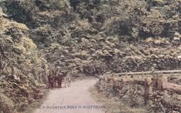 Postcard A Mountain Road In Australia [ Commonwealth Of Australia Series ] My Ref  B13320 - Australia