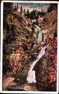 4900) Cartolina Della California -an Orchard In Bloom-viaggiata 1921 - Stati Uniti