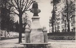 CPSM Chatenay-Malabry - La Statue De Voltaire - Chatenay Malabry