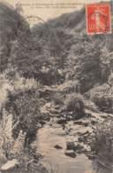 42 - Sources Et Etablissement De SAIL-les-BAINS - Le Parc - Un Coin Pittoresque - Autres Communes