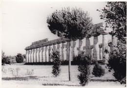 PAESTUM. PHOTO ORIGINAL CIRCA 1960's SIZE 10x7cm  - BLEUP - Places